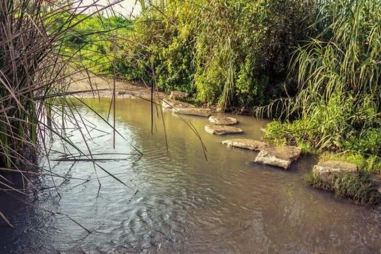 Construire une maison au bord d'un étang ou d'une rivière: droits et obligations