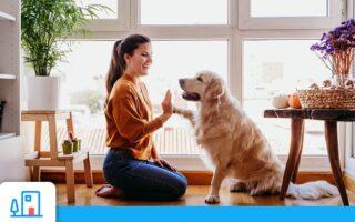 L'assurance habitation est-elle obligatoire?