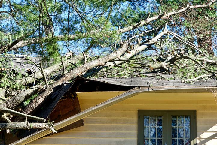 Tempête et assurance habitation: l'indemnisation en 10 questions