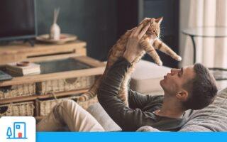 Hausse des coûts de l'assurance habitation: comment bien la comprendre et limiter son impact sur votre contrat?
