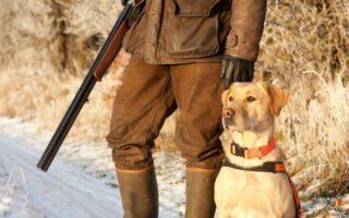 Chasseurs, comment bien choisir votre assurance chasse?