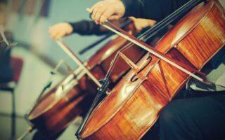 Assurer son instrument de musique