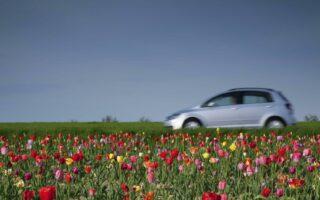 En quoi consiste l'assurance permis de conduire?