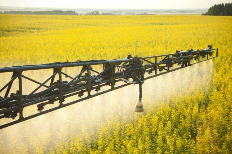 Jusqu'à 30 pesticides retrouvés dans la poussière d'habitations proches de cultures