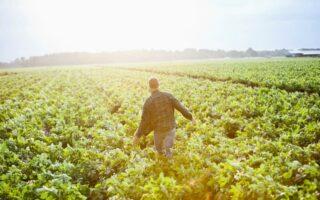 Salariés agricoles: quelle couverture santé?