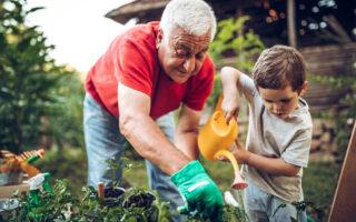 Maintien à domicile des personnes âgées: le point sur les aides