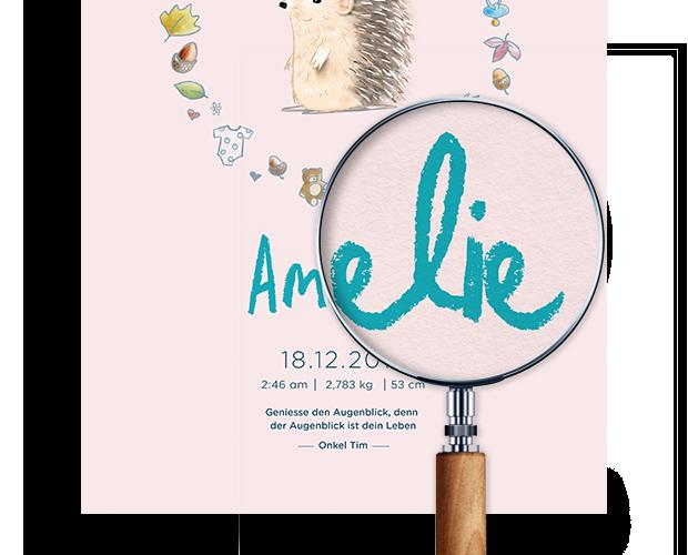 Ausschnitt eines rosa Geburtsposters mit dem Namen Amelie und einem Igel mit schöner Verzierung