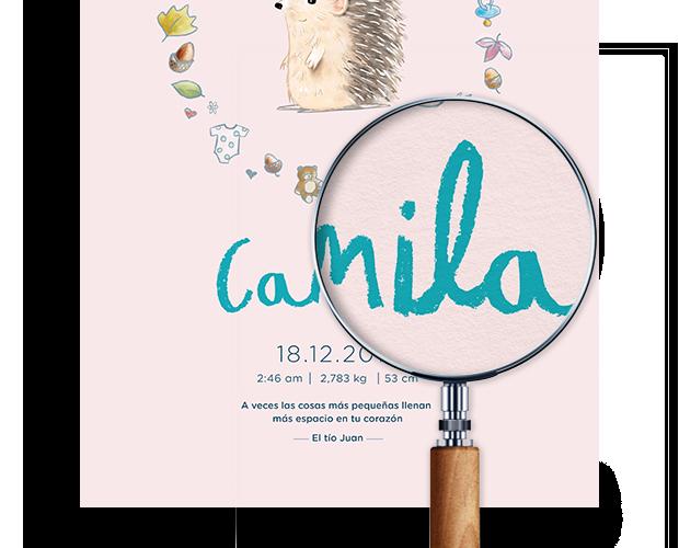 Lupa que muestra un primer plano de nuestra lámina para bebé en rosa para Camila