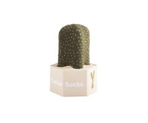 Sokken cactus stippen