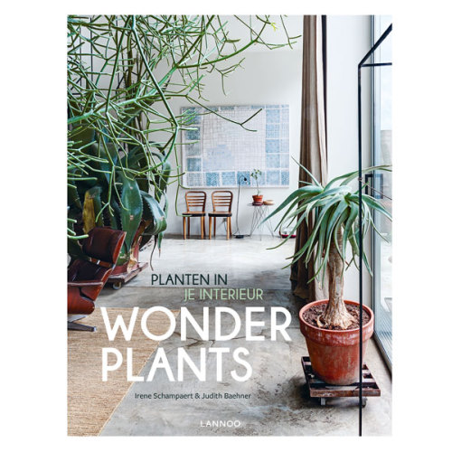 Wonderplants Planten in je interieur - www.kidsdinge.com