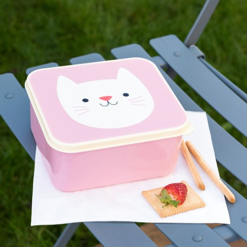 Lunchbox met kat
