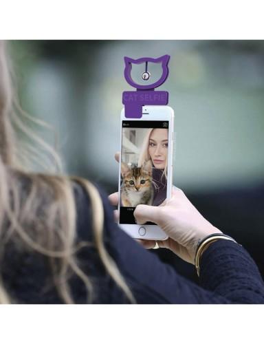 Cat selfie smartphone