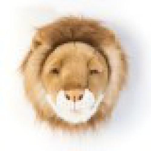 Wild & Soft • Trophy leeuw Cesar