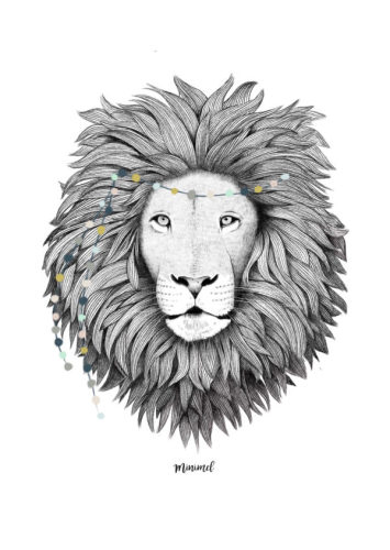 Poster A4 Leeuw