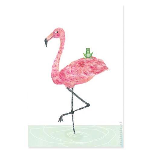 Poster 'Flamingo en kikker'