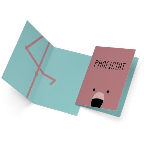 Flamingo / Proficiat