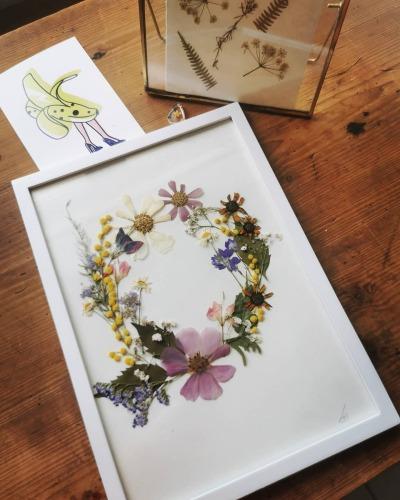Herbarium art 14/11 - StudioFluo