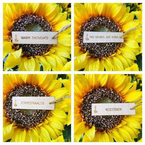 Houten bloemenkaartjes (set van 4)