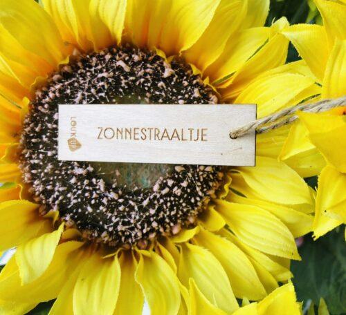 Houten bloemenkaartje: zonnestraaltje