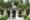 Wedding Photography at East Brunswick, NJ