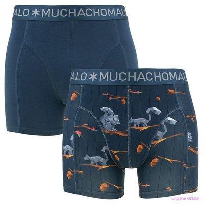 Muchachomalo Lingerie Squirrel 2pack Boxershort