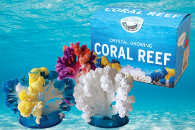Have an Aquatic Adventure With Our Coral Reef Kit!