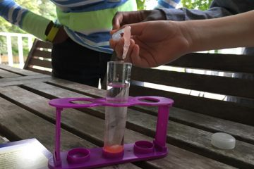 Extracting DNA