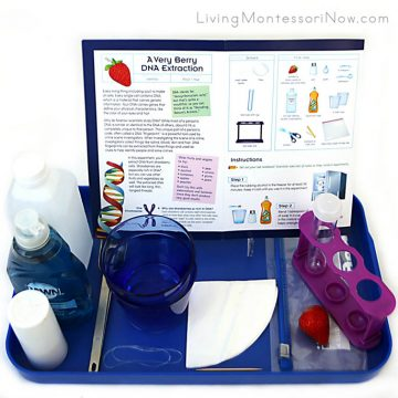 Montessori Now Review of Science Expeditions