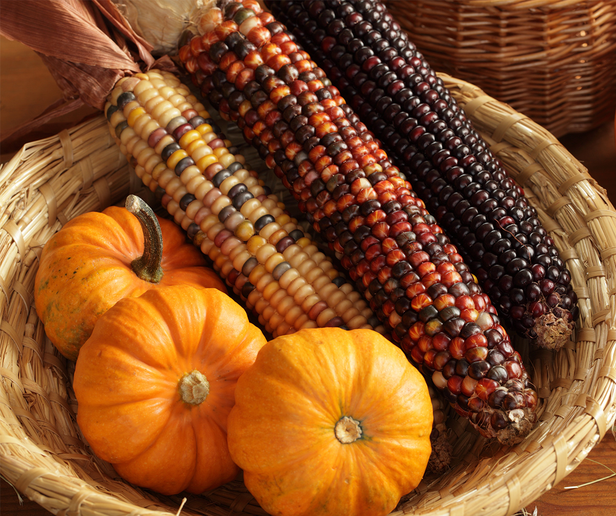 thanksgiving day in canada This year, thanksgiving day is monday, october 9.