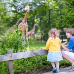 Children looking at giraffes at zoo