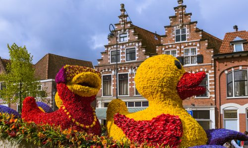 Learn about the Flower Parade of the Bollenstreek, an annual spring parade in Holland