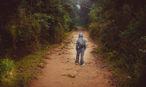What to do if you get lost while camping; advice from Little Passports