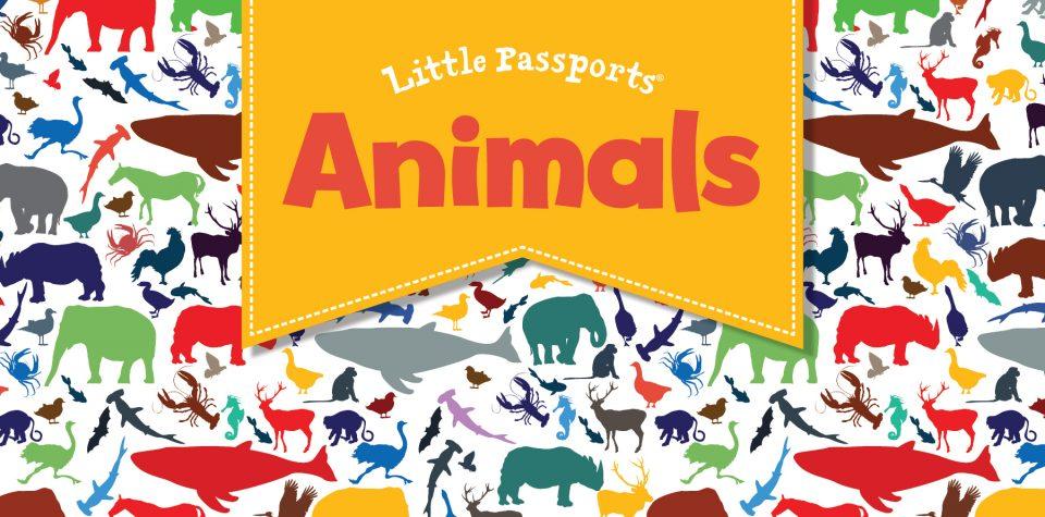 Animals activities for kids