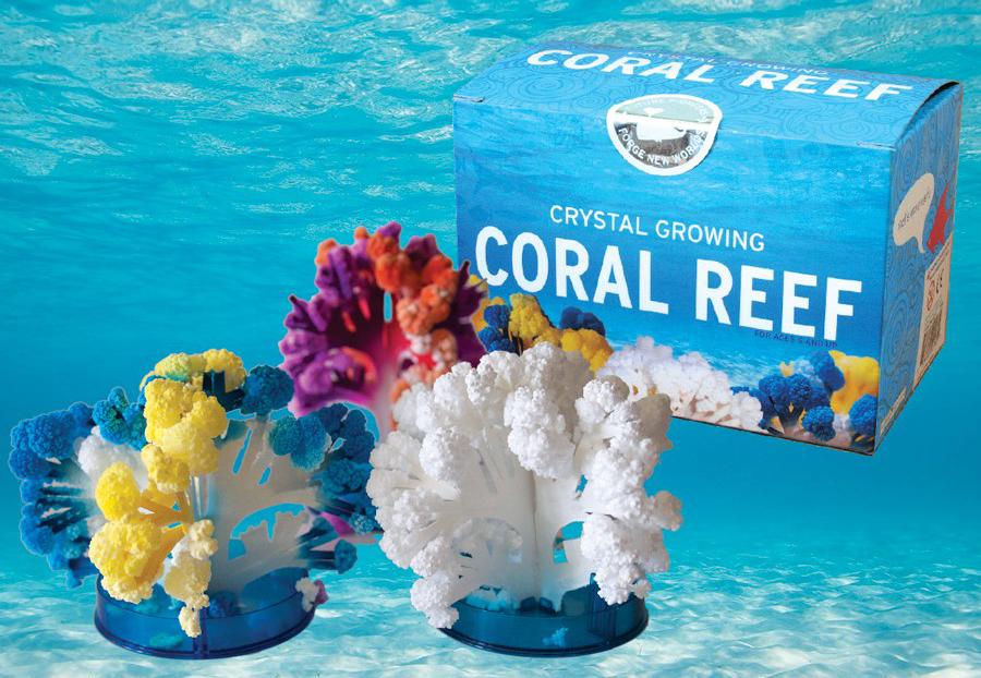Coral reef crystal growing kit