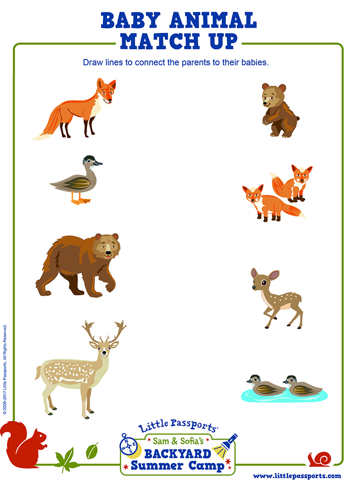 It is an image of Sassy Animal Matching Game Printable