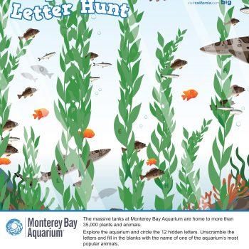 Monterey Bay Aquarium Printable Activity