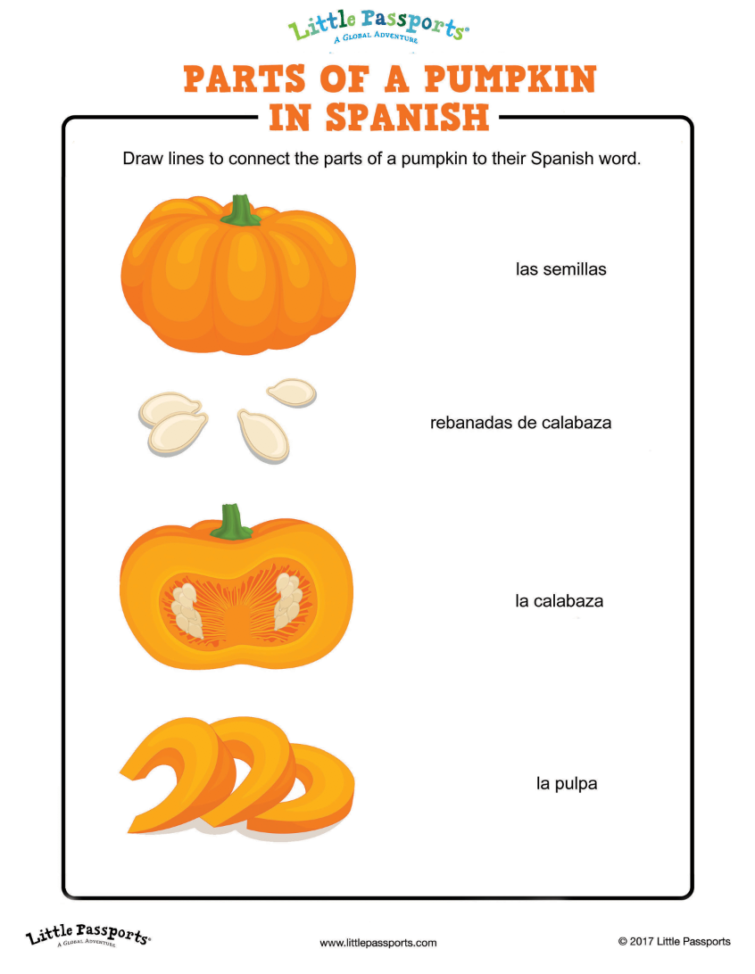 Learn the parts of a pumpkin in spanish