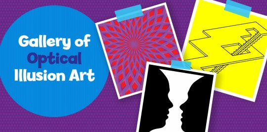 Gallery of Optical Illusion Art