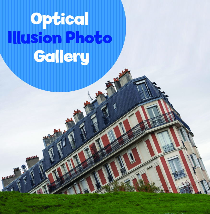 Silly Optical Illusion Photo Gallery