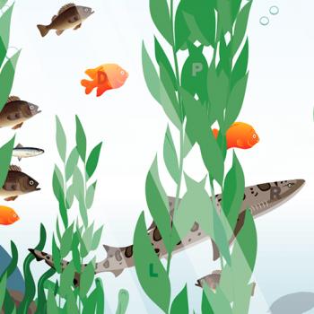 VCA-aquarium-printable