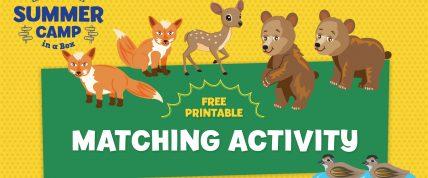 Baby Animal matching activity