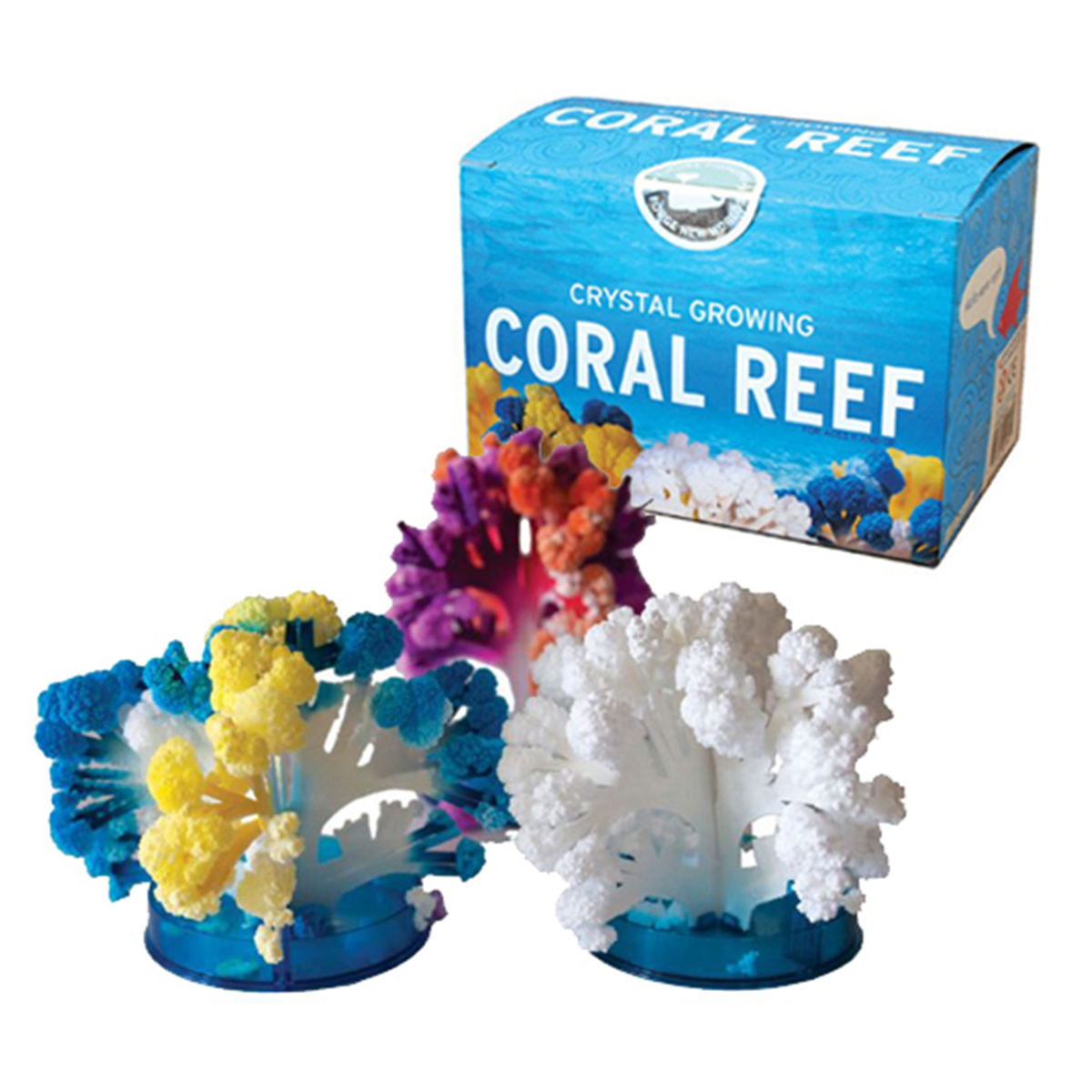 Coral Reef Kit educational Gifts for Kids