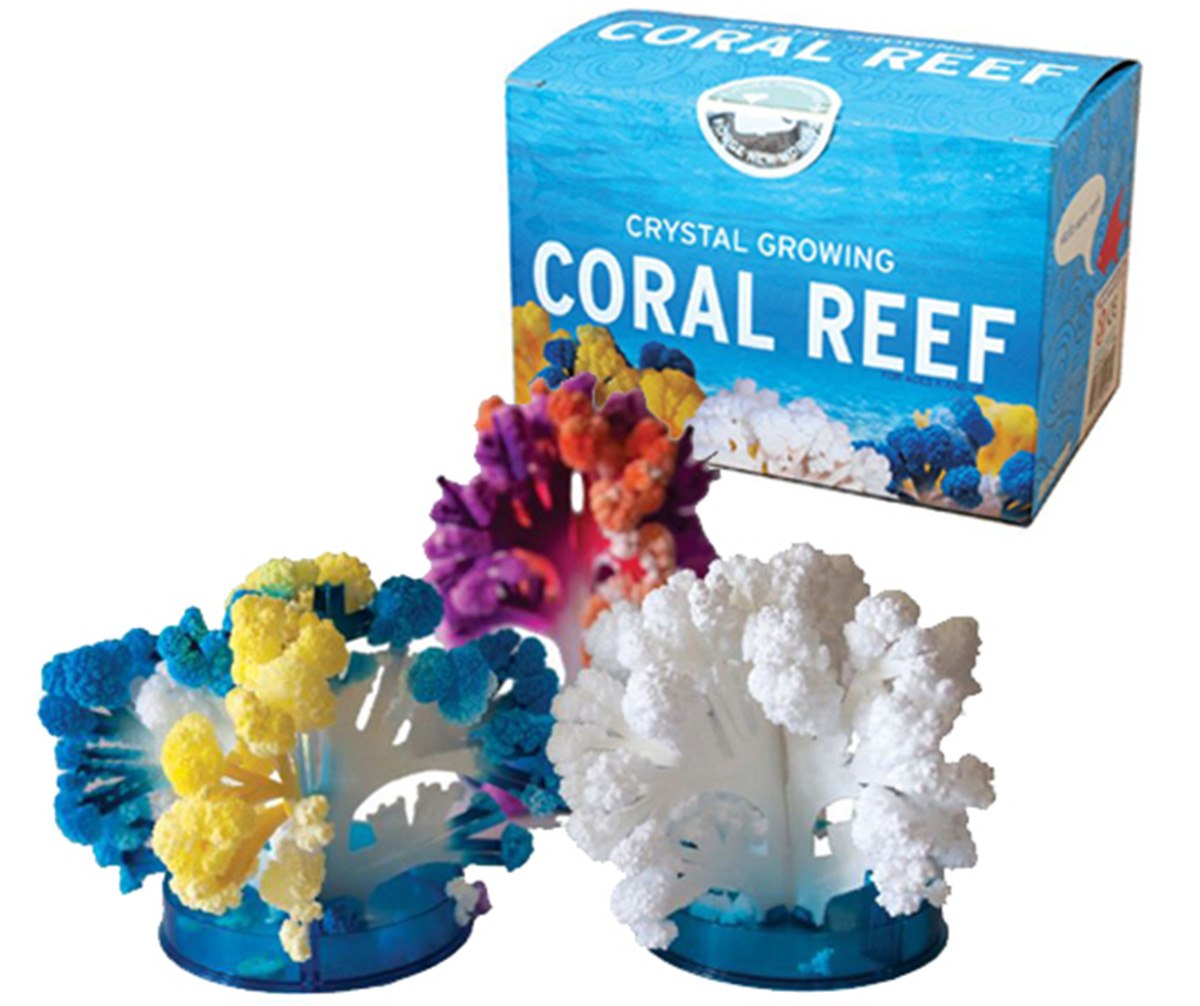 Coral Reef  package with examples