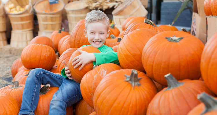 kid with pumpkin