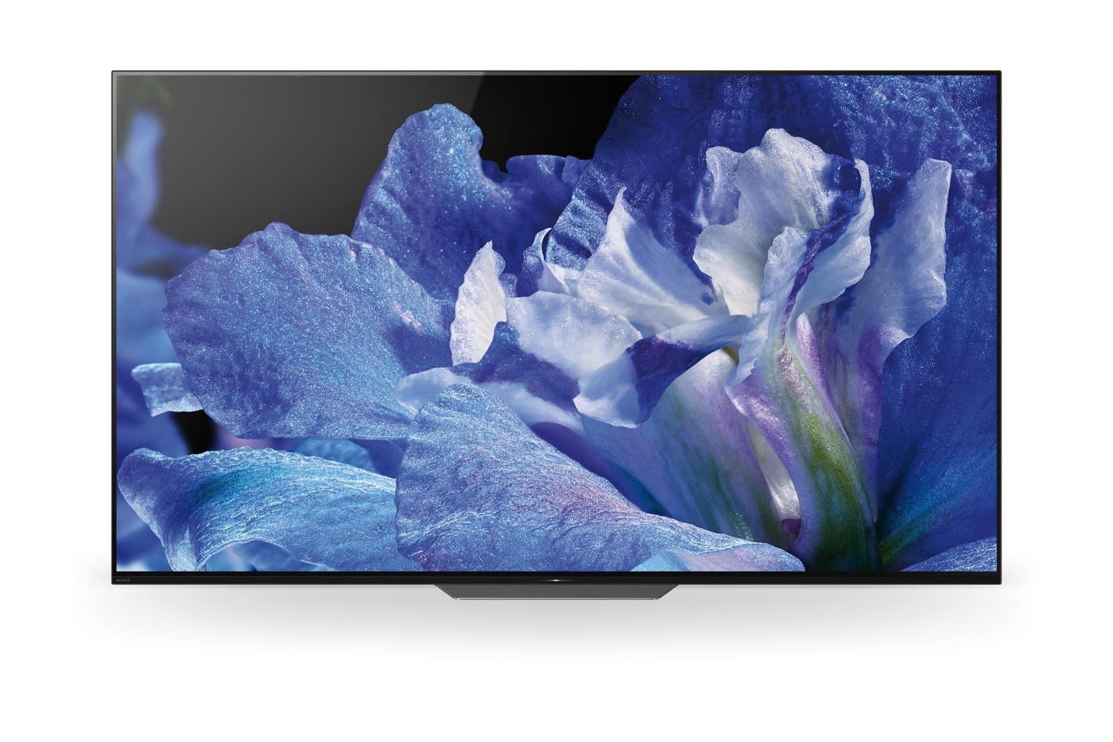 SONY OLED TV KD-65AF8