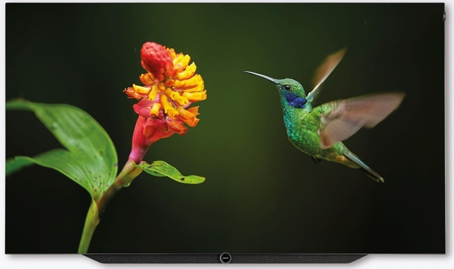 Foto van Loewe Bild 7.65 OLED (incl. WM7) 65 inch OLED TV