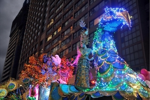 Mardi Gras Parade Peacock Float