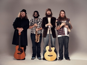 The Beards single & tour 2011