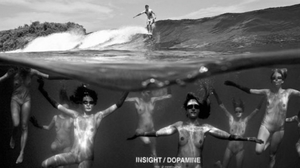 INSIGHT - Dopamine Surf Movie
