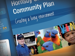 hornsby shire community plan | 3 panel brochure